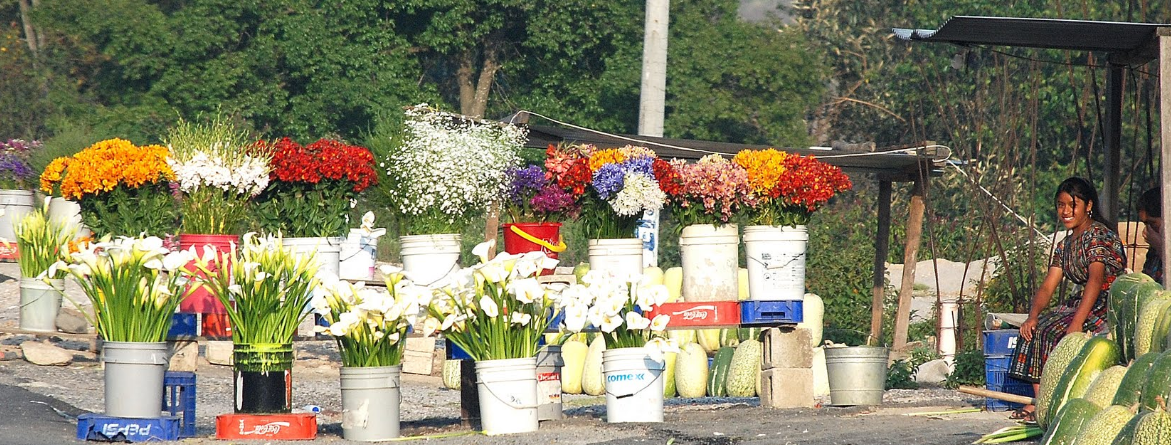 Bob LaGarde - Road trip through Central America - roadside flower market